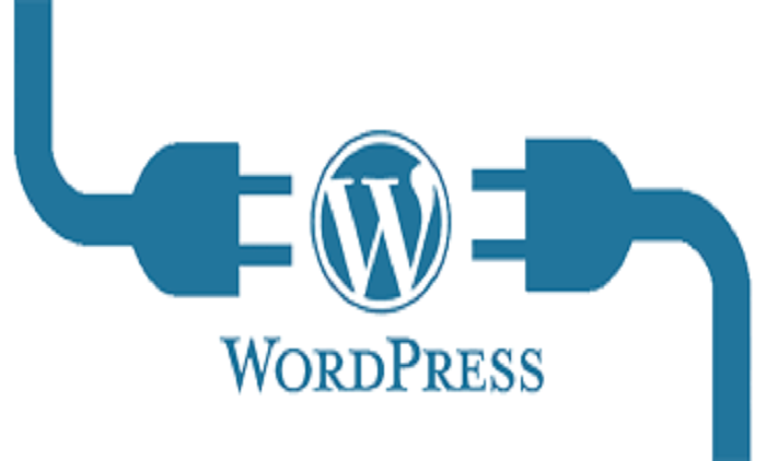 How to Install WordPress Plugin?